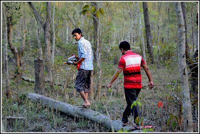 Nijhum Dwip, Mangrove Forest, Nijhum Island Hatia, Trip Navigation Bangladesh, Nijhum Dwip Travel Guide