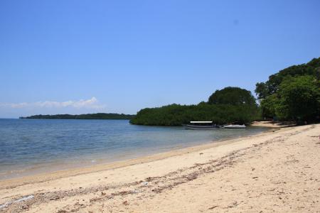 Wisata Pantai Bama di Situbondo Jawa Timur