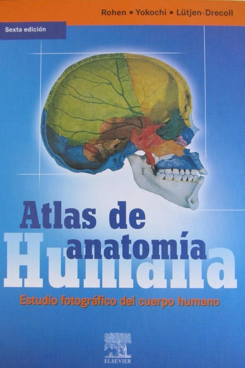 Dorable Anatomía Y Fisiología Saladino 6ª Edición Colección ...