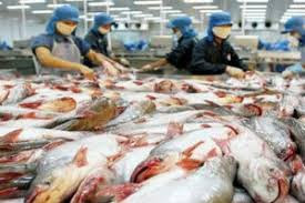 Gujarat tops Annual Fish Production of 7.8 lakh tonnes
