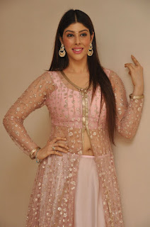 Actress Aditi Singh Latest Stills in Designer Dress at Guppedantha Prema Pressmeet 0005.jpg