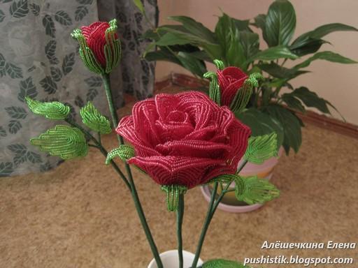 роза из бисера мастер класс