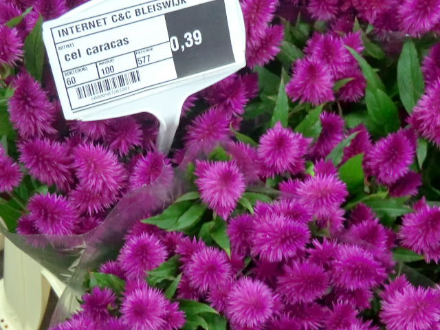 Cut Flower bundles at Dutch wholesaler