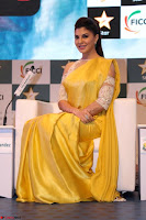 Gorgeous Jacqueline Fernandez  in yellow saree 42.JPG