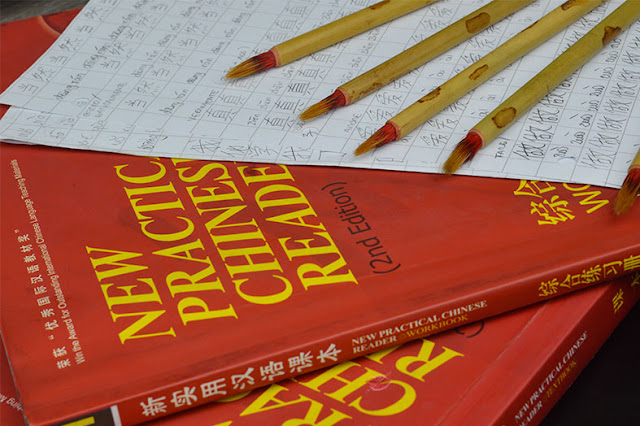 studiare il cinese, learn , study, chinese, new pratice chinese reader