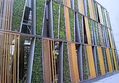Tukang Taman Vertikal Surabaya | Vertical Garden 17