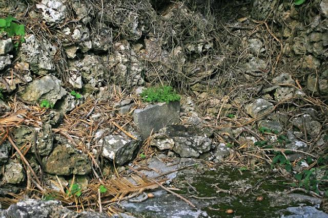 アコークバオー(糸満市 兼城集落)の写真