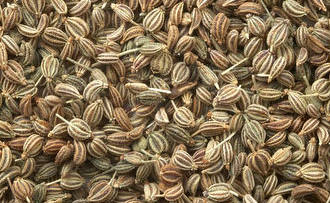 Ajwain (Carom seeds) for Diabetes Mellitus