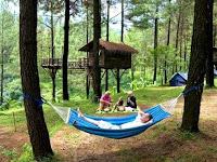 Rumah Pohon Taman Dayu Pandaan, Pasuruan (Tiket Masuk, Lokasi)
