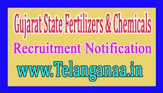 Gujarat State Fertilizers & Chemicals GSFC Recruitment Notification 2017