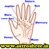 What Are Parwat In Palm?, What Are The Effects Of Parvat or Parwat in Marriage Life?, What is Palmistry?, Navagrah analysis through palm reading, Solutions of problems through Palm reading.