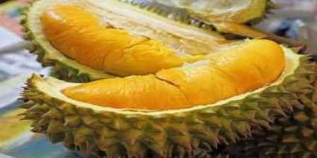 Permalink ke Aneka Makanan Tradisional Yang Dibuat Dari Buah Durian