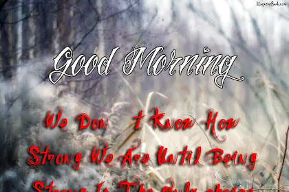 Bests Greetings Under Good Morning Quotes With Rain Images Catetory