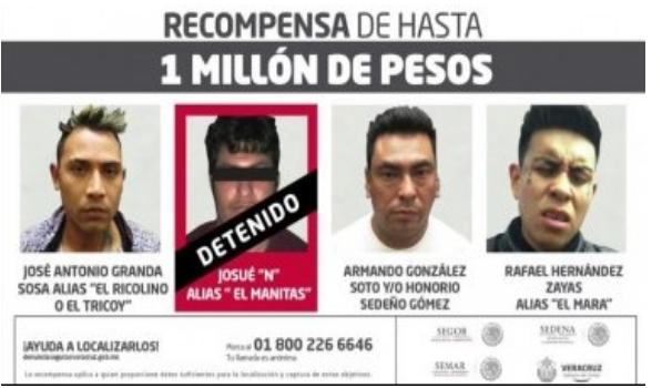 EL MINI CÁRTEL DE LOS 35Z QUE DEJÓ 9 DESCUARTIZADOS EN XALAPA