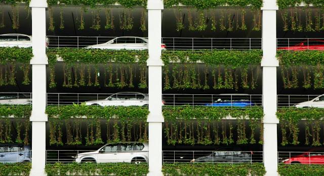 thi-truong-nha-dat-chung-cu-ecogreen-city-nguyen-xien-11