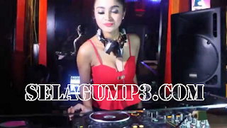 Download DJ Remix Terbaru Paling Enak Didengar Top Hits Mp3