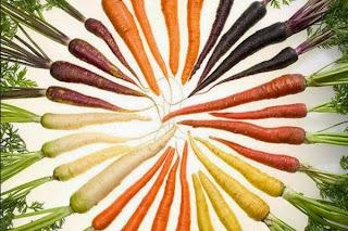 Food. La scienza dai semi al piatto Dal 20 novembre 2014 al 28 giugno 2015 Milano