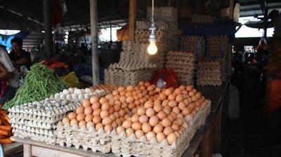 Tips Sistem Pemasaran Telur Ayam Offline dan Online