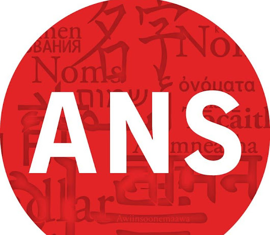 Call for Papers: 2019 ANS Conference Special Panel on Names, Naming, Gender, Sex
