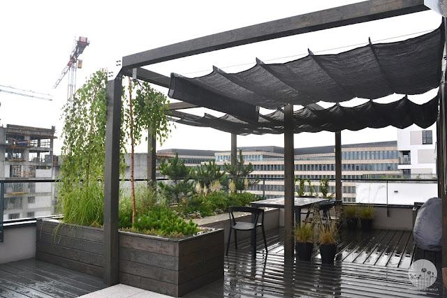 nowoczesny_ogrod_projektowanie