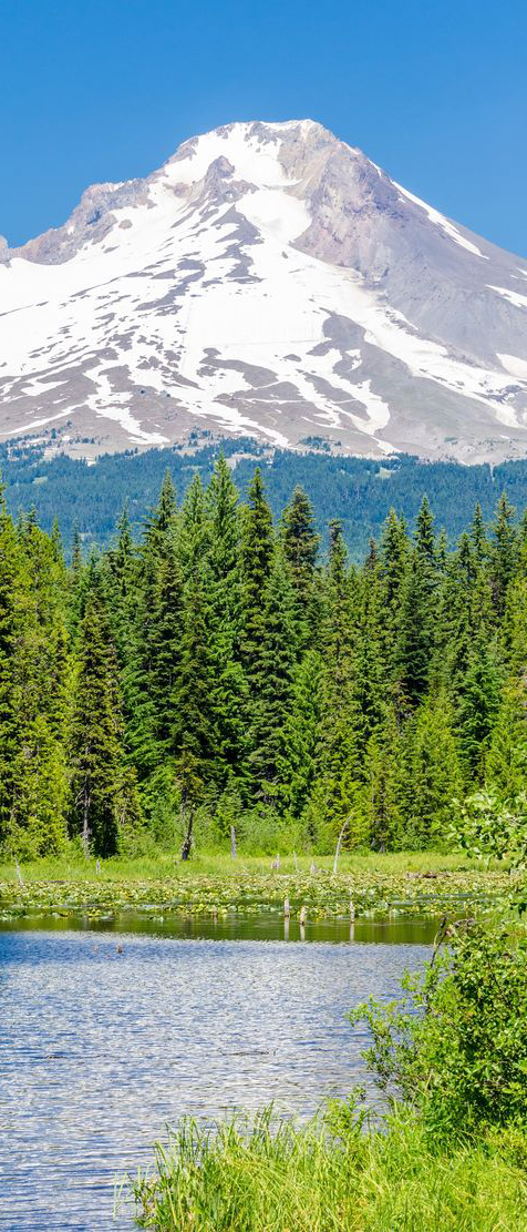 Mount Hood National Forest, Oregon and 50+ Secret Places in America That Most Tourists Don't Know About
