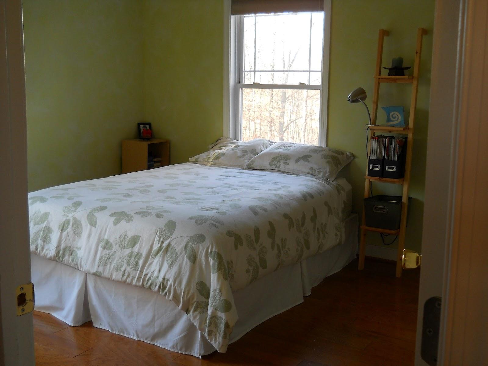 1001 Goals Master Bedroom Progress