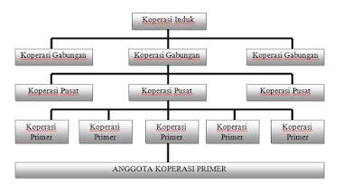 Peran koprasi dan perangkat organisasi, koprasi perangkat organisasi eksternal