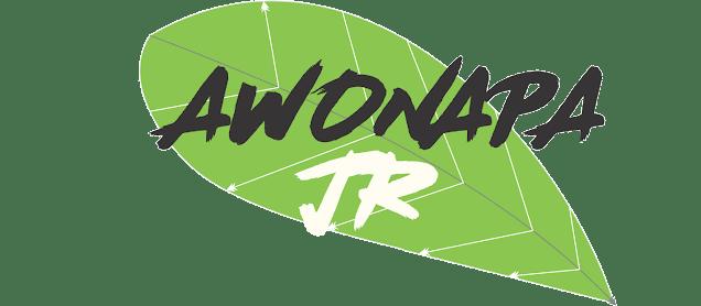 Tentang Awonapa.com