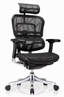 Ergo Elite Chair by Eurotech