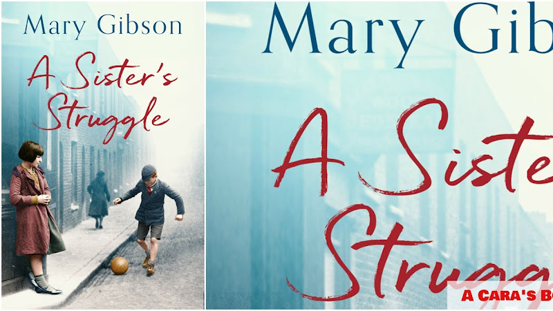 A Sister's Struggle by Mary Gibson Review