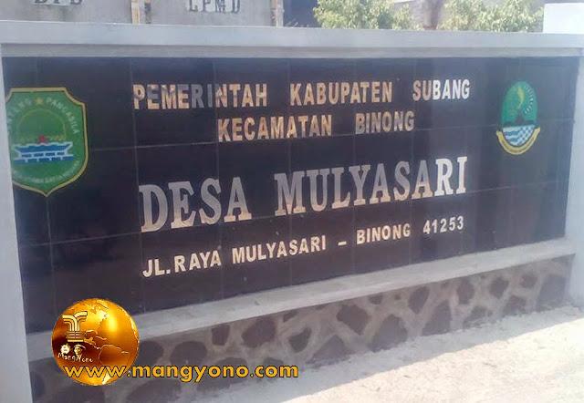 Alamat Desa Mulyasari Jl. Raya Mulyasari - Binong Kode Pos 41253. Poto ini hasil jepretan Kang Ian Susanto - Facebooker Subang ( FBS )
