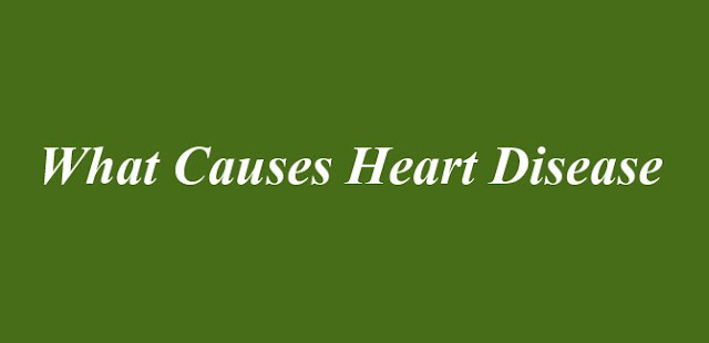 What Causes Heart Disease