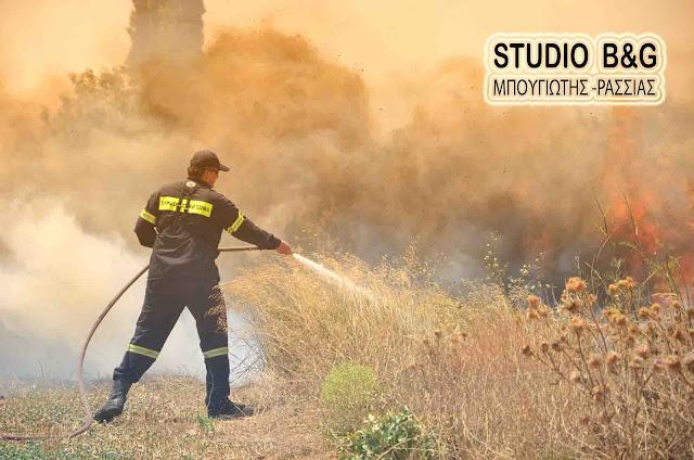 Σε μία ημέρα 67 δασικές πυρκαγιές