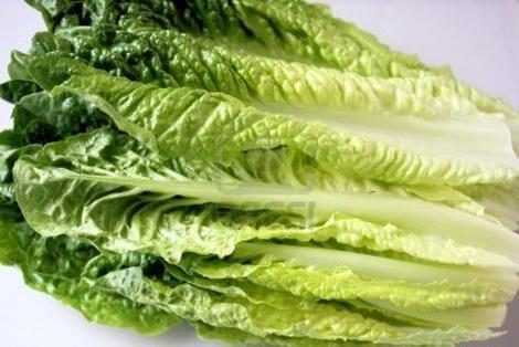 Tác dụng thần kỳ tốt cho sức khỏe của rau xà lách