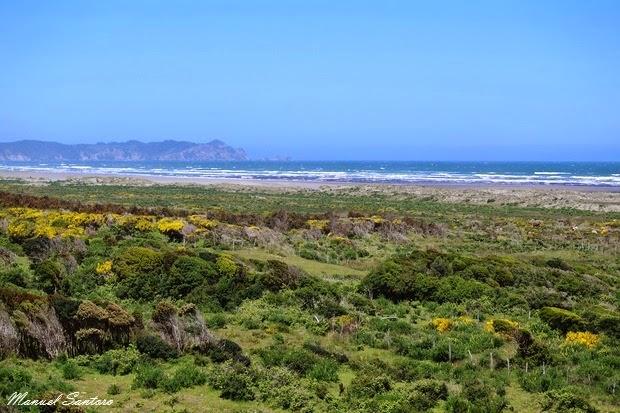 Parque Nacional Chiloè, mirador sull'oceano