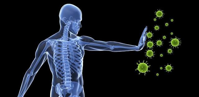 Sistema inmune e inmunidad