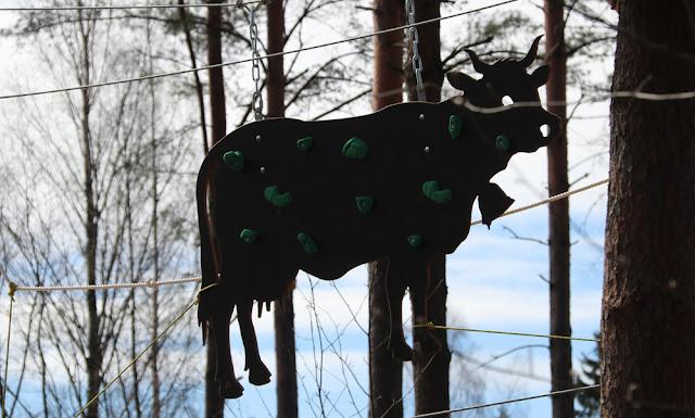 Uusi köysiseikkailupuisto avattiin Helsingin Paloheinään 10