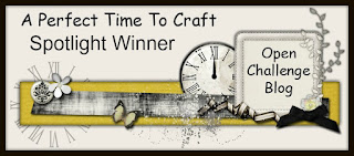 http://aperfecttimetocraft.blogspot.co.uk/2017/11/winners-post-perfect-time-to-craft-open.html