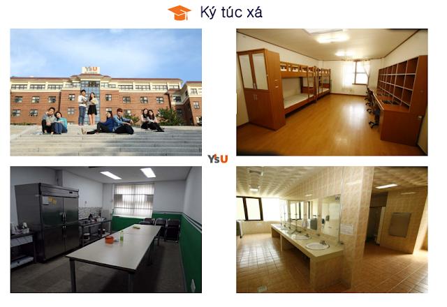 Ký túc xá đại học Youngsan Hàn Quốc
