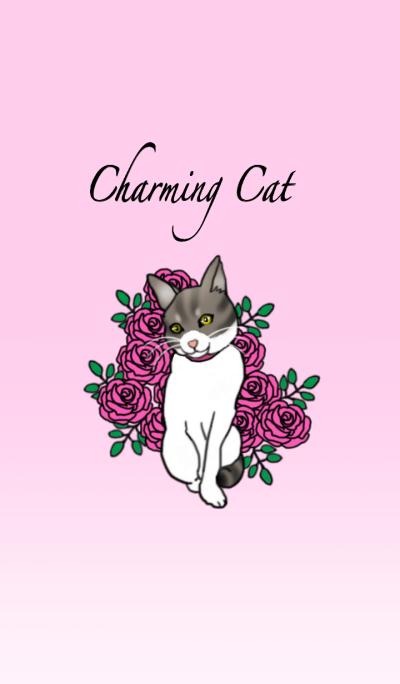 Charming cat CHARMIE