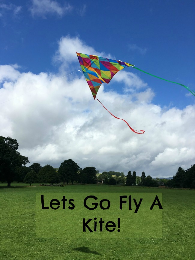 Lets-Go-Fly-A-Kite!-text-on-picture-of-kite-in-sky