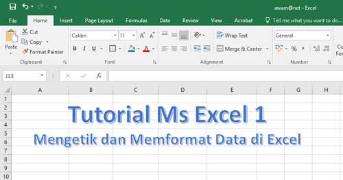 tutorial ms excel dasar mengetik dan memformat data