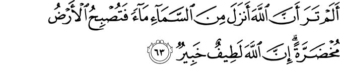 Surat Al Hajj ayat 63