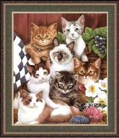 Котенца и нарциси + PM