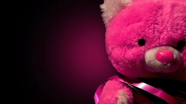 Osito Teddy Bear Rosado