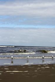mittwochs mag ich, Landal Park Ooghduyne, Strandhausurlaub Julianadorp Nordholland, Ferien Strandhaus