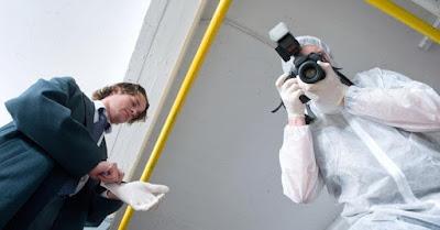 Crime Scene Investigators Job Search