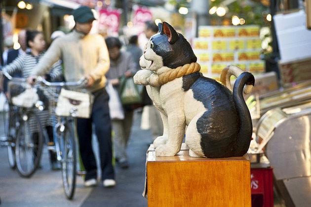 أجمل معالم طوكيو السياحية