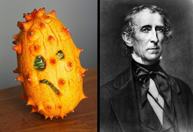 Kiwano Melon and John Tyler. It makes good toast. marchmatron.com