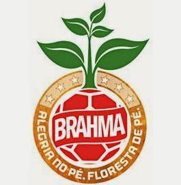 Projeto de conservação ambiental Brahma, Brahma sustentável, Brahma, sustentabilidade ambiental, projetos socioambientais, futebol, brasileirão 2014, copa do mundo, um gol uma árvore